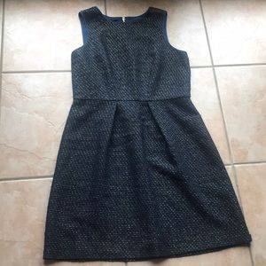 LOFT Navy And Black Metallic Tweed Dress Size 14T